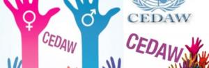 Звернення до жіночих та феміністичних організацій